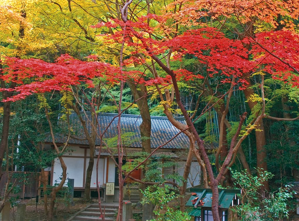 photo:Choraku-ji Temple Repository