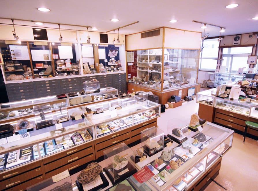 写真:益富地学会館(石ふしぎ博物館)