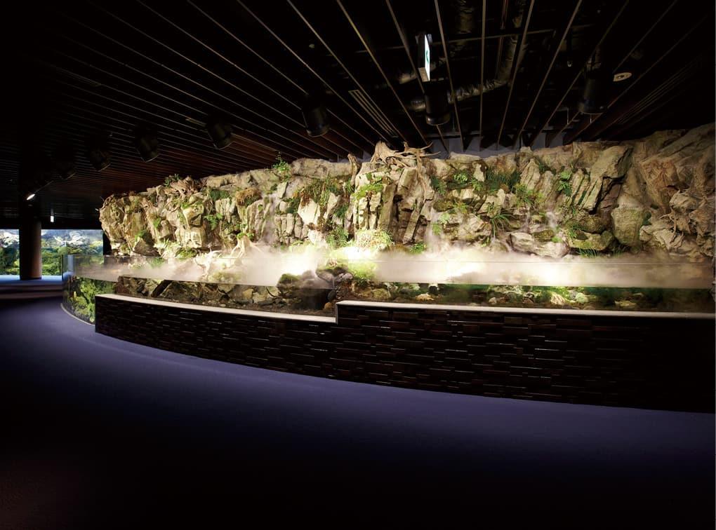 写真:京都水族館