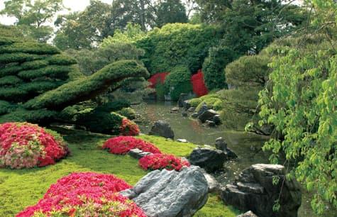 写真室町の庭